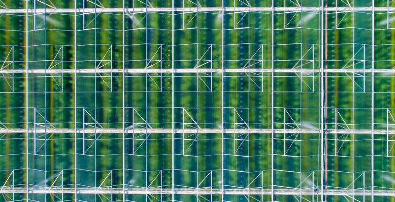 Image of glasshouse glazing