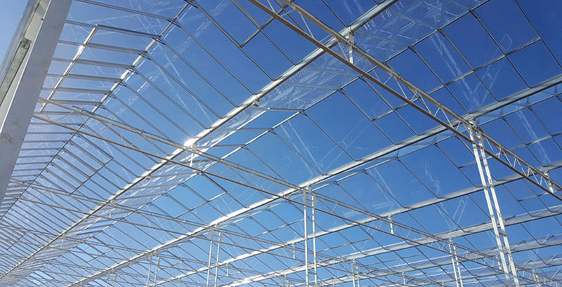 Image of glasshouse structures